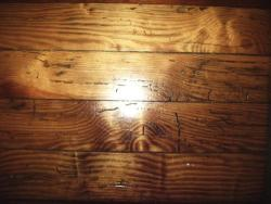 Powder post beetles damage in wood floor.